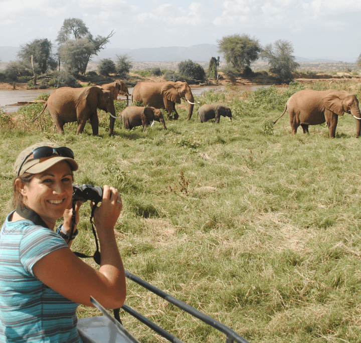 woman taking pictures of elephants