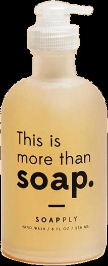 Soapply LIQUID HAND WASH Soapply, $23