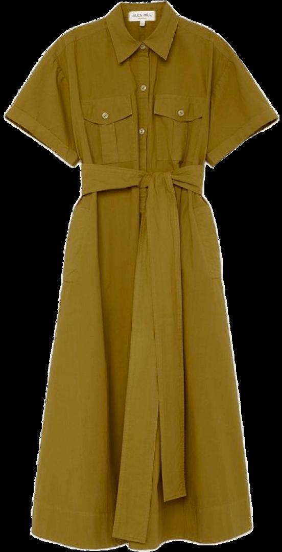 Alex Mill dress