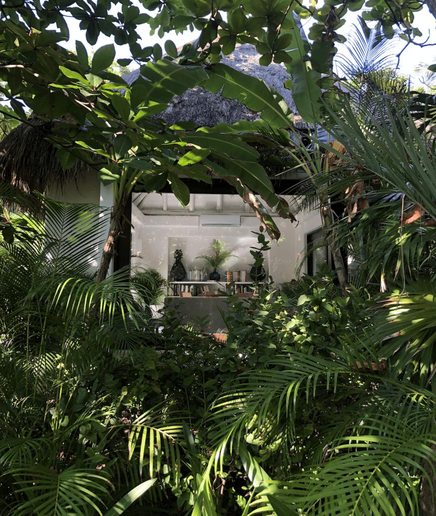 Hotel Esencia trees